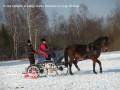 """Pasākums """"Konusi sniegā"""".23.02.13."""